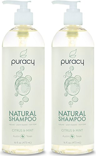 Puracy Natural Daily Shampoo, Sulfate Free Cleanser, Developed by Doctors Using Clinically Superior Ingredients, Citrus and Mint, 16 Ounce Bottle, (Pack of 2) (Mens Shampoo And Conditioner Pump compare prices)
