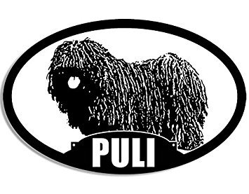 MAGNET Oval PULI Silhouette Magnet(dog breed) Size: 3 x 5 inch ()