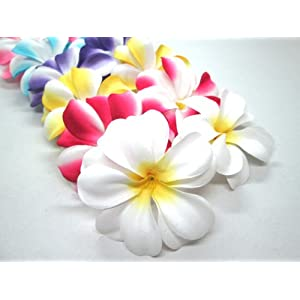 "(12) Assorted Hawaiian Plumeria Frangipani Silk Flower Heads - 3"" - Artificial Flowers Head Fabric Floral Supplies Wholesale Lot for Wedding Flowers Accessories Make Bridal Hair Clips Headbands Dress 10"