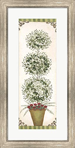 (Topiary V by Cindy Shamp Framed Art Print Wall Picture, Silver Scoop Frame, 17 x 33 inches)