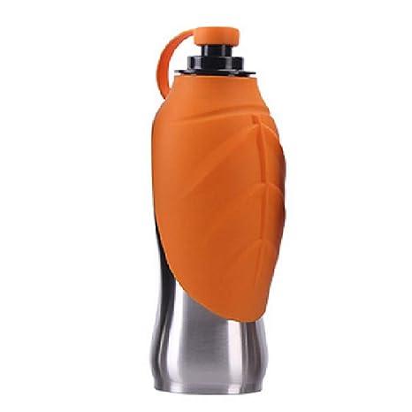 Liyanan Botella de Agua para Perro, Acero Inoxidable 304 y ...