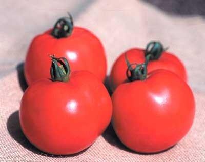 30 Seeds of Better Boy Vfn Hybrid - Tomatoes Mid Season