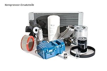 Atlas Copco compresor: filtro/separator Kit 4000 horas 2901350500