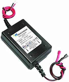 41PX1NfUgeL._AC_UL320_SR284320_ amazon com curt 52025 breakaway battery charger automotive  at reclaimingppi.co