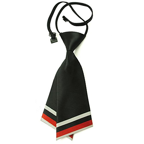 Hanerdun Womens Bowtie Ladies Pre Tied Silk Necktie Costume Accessory Gift Idea