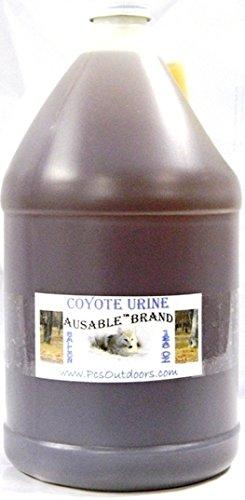 AuSable® Brand Coyote Urine 1 Gallon of Pure Coyote Urine - Coyote Urine