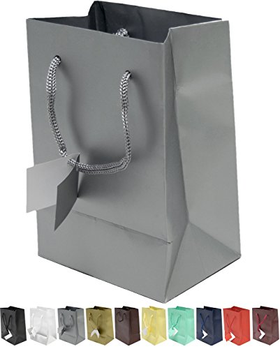 Novel Box® Silver Matte Laminated Euro Tote Paper Gift Bag Bundle 4.75