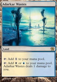 Magic: the Gathering - Adarkar Wastes - Ninth Edition