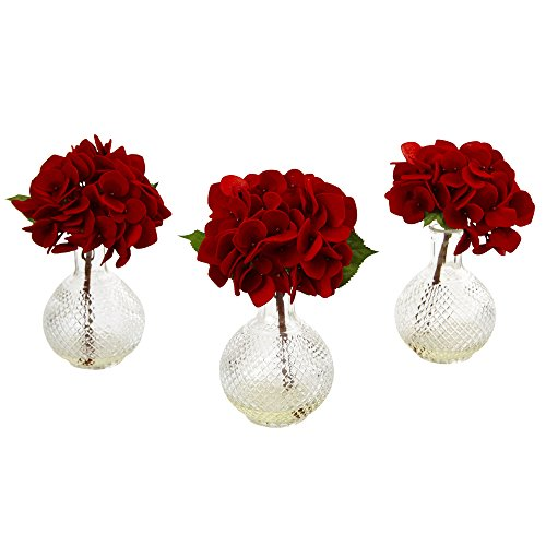 ngea with Glass Vase (Set of 3), Red ()