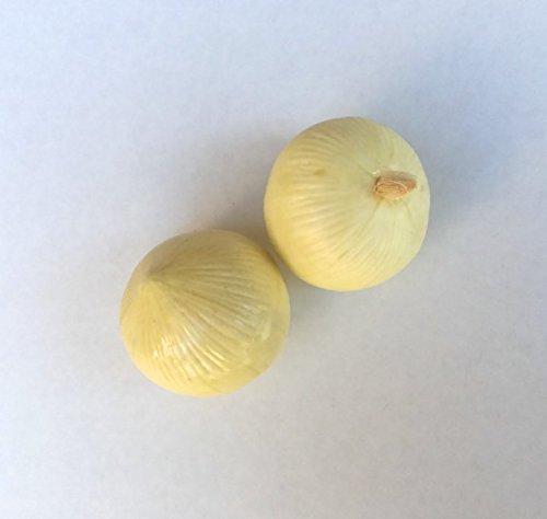 Mezly 6pcs Artificial White Onion Large 4.5 inch Plastic Decorative Onions Vegetable Six Pieces by Mezly
