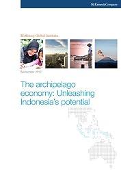The archipelago economy: Unleashing Indonesia's potential (English Edition)
