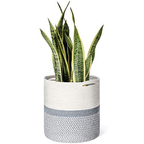 (Dahey Cotton Rope Plant Basket Modern Woven Storage Basket for Up to 10