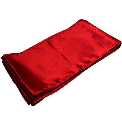 Dobelove Kung Fu Satin Sash Belt (Red)