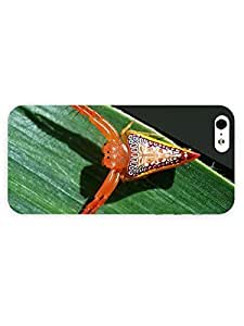 3d Full Wrap Case For Ipod Touch 5 Cover Animal Orange Spider