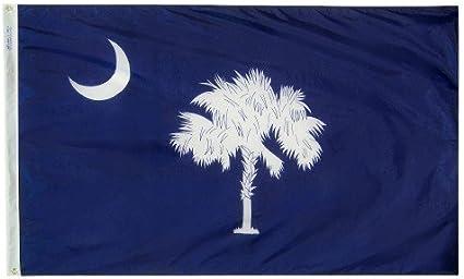 Amazon Com 4x6 South Carolina Nylon State Flag Outdoor Flags Garden Outdoor