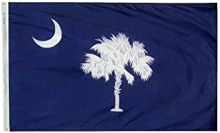 product image for All Star Flags 3x5' South Carolina Heavy Weight Nylon Flag from