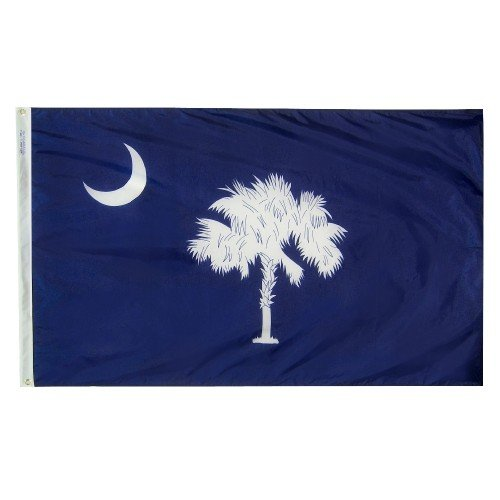 3x5' South Carolina Heavy Weight Nylon Flag from All Star Fl