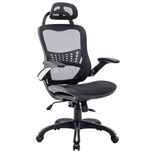 Kerms Ergonomic Adjustable Swivel Office Chair with Lumbar Support and Rollerblade Wheels-High Back with Breathable Mesh-Thick Seat Cushion-Flip Up Arms,Desk Chair Black/Silver