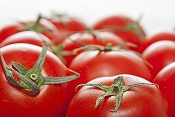 """Tomate""""Elf"""" - para cultivo bajo cubiertas - Semillas de variedades premium para todos"""