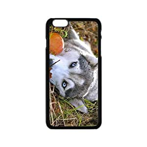 Alaskan Malamute Hight Quality Plastic Case for Iphone 6