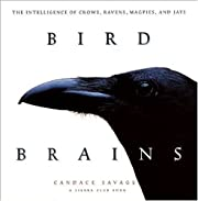 Bird Brains: The Intelligence of Crows,…