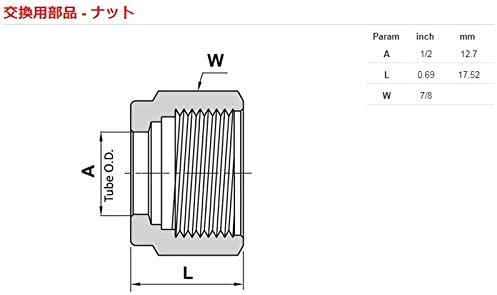 1//2 Compression 316 SS Nut