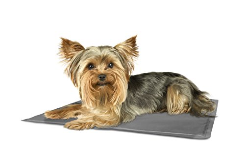 Furhaven Pet Pupicicle Cool Medium product image