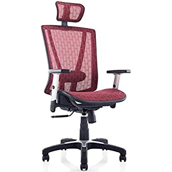 This item Ergomax Fully Meshed Ergo Office Chair with Headrest  Red Amazon com  Ergomax Fully Meshed Ergo Office Chair with Headrest  . Ergo Office Chair Amazon. Home Design Ideas