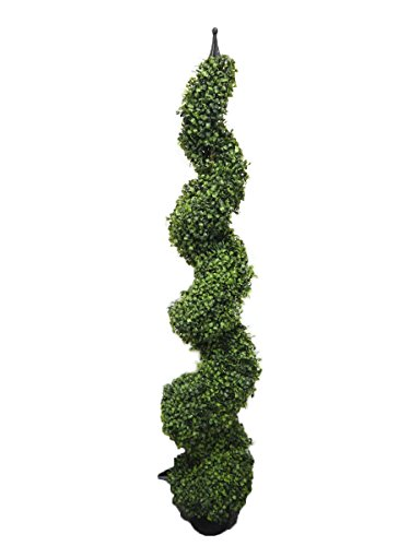 Boxwood Spiral Tree with Decorative Finial - Pre Potted Home Decor (5 Foot Heart Leaf)