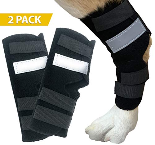 Dasksha Dog Leg Brace for Hind Leg - Check Size Guide - 2 Pack - Used as Hind Leg Support for Arthritis, Stability After Injury, Dog Hock Support (My Dog Has Problems With His Back Legs)