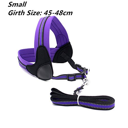 roadwi Front Range Dog Harness Vest, Adjustable Soft Neoprene Breathable Padded, No-Pull Safety for Walking, Hiking, Training, Running (Small, Purple)
