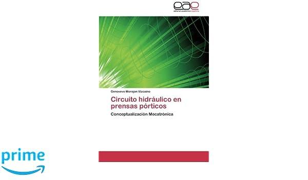 Amazon.com: Circuito hidráulico en prensas pórticos: Conceptualización Mecatrónica (Spanish Edition) (9783848450145): Genovevo Morejon Vizcaino: Books