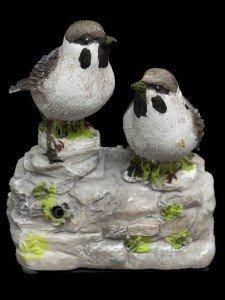 easysensor-brown-white-whistling-birds-with-sensor