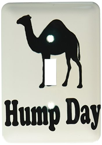 3dRose lsp_159637_1 Hump Day Camel Wednesday Single Toggle Switch