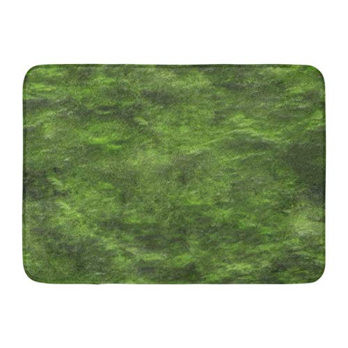 qingqing-us Bath Mat Stone Green Moss Repeatable Mossy Pattern Ground Forest Bathroom Decor Rug 15.7