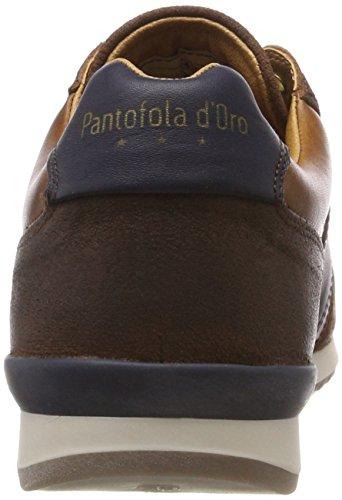 d'Oro Braun Teramo Jcu Uomo Sneaker Shell Low Pantofola Herren Tortoise dERwqnOd7x