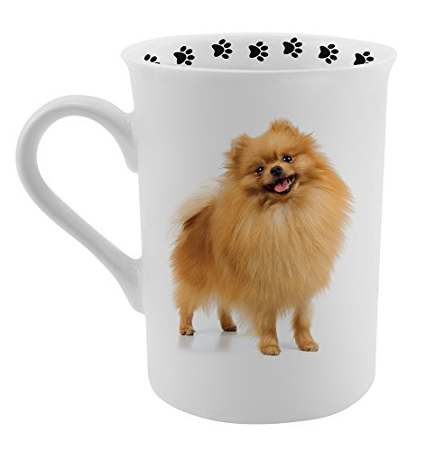 Pomeranian Gifts (Dimension 9 Pomeranian Coffee Mug, White)