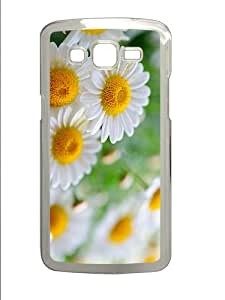 case sell Daisies PC Transparent case/cover for Samsung Galaxy Grand 2/7106