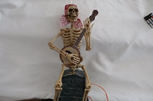 Totally Ghoul Banjo Playing Skeleton]()