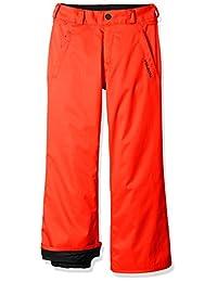 Volcom Big Boys' Explorer Insulated Pant