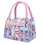 Cute Cartoon Lunch Box Tote Cooler Bag for Women Kids Portable Waterproof Picnic Lunch Bag Thermal Insulated Pouch Lunch Container