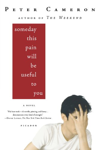 Someday This Pain Will Be Useful to You: A Novel PDF