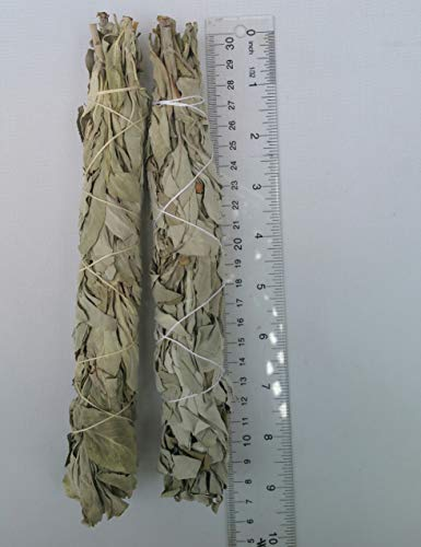(The Better Scents California White sage Smudge Stick-Quality Salvia Apiana 2 x Approx. 7