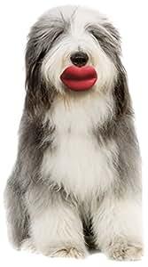 Moody Pet Humunga Lips Mini Dog Toy