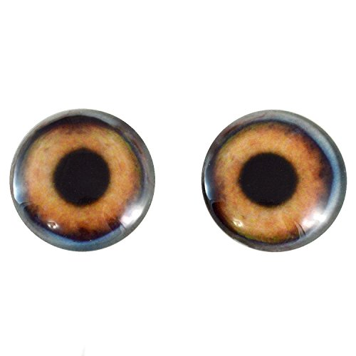 40mm Pair of Large Brown Dog Glass Eyes, for Jewelry making, Arts Dolls, Sculptures, and More by Megan's Beaded Designs