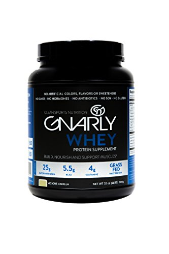 Gnarly Nutrition Whey Sports Protein || All Natural New Zealand Grass Fed Whey Protein (Vicious Vanilla) by Gnarly Nutrition