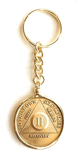 AA NA Medallion Keychain Chip Holder 18k Gold Plated Fits Wendells Bronze Gold Plated or Color Chips