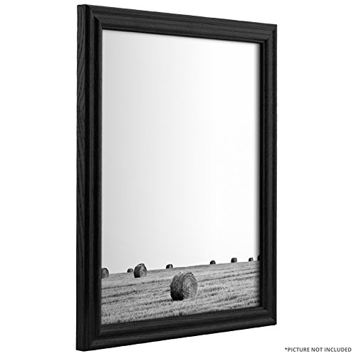 Craig Frames 200ASHBK 16 by 20-Inch Picture Frame, Wood ...