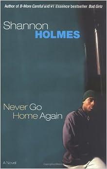 Book Never Go Home Again: A Novel