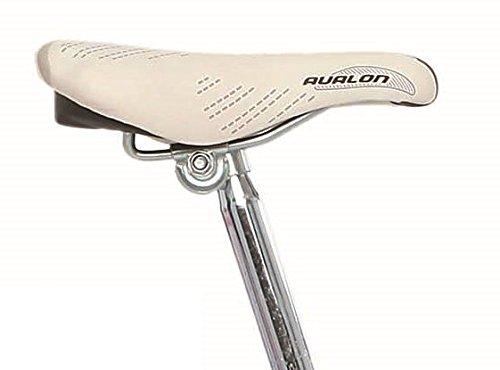 28 pulgadas Legnano fenicot Tero Mujer Holland bicicleta Single Speed, pink-hellblau: Amazon.es: Deportes y aire libre